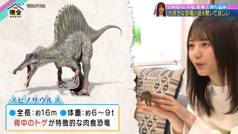 恐竜好きアイドル日向坂46小坂菜緒、地上波でスイッチ入る【櫻井・有吉THE夜会】